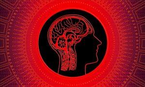 Наш мозг— голографическая машина, которая существует в голографической вселенной? Gehirn-300x181